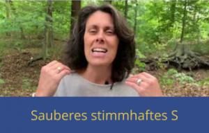Sauberes stimmhaftes S Video 300x192 - Sauberes stimmhaftes S Video