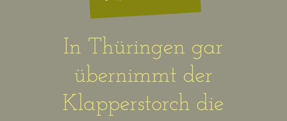 Rhetorik_Consulting_Fremdwörter_da_brat_mir_einer_einen_Storch